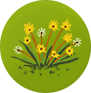 File:DANDELION SMALL.png