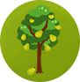 PEAR TREE SMALL.png