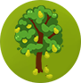 PEAR TREE LARGE.png
