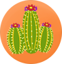 BARREL CACTUS MEDIUM.png