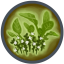 Icon Plant Herbs.png